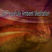 65 Peacefully Ambient Meditation de White Noise Therapy (1)