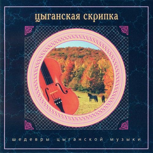 Gypsy Violin by Nikolai Erdenko
