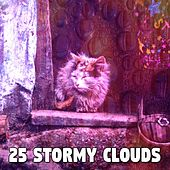 25 Stormy Clouds de Rain Sounds and White Noise
