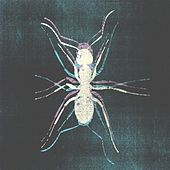 Kiko - EP by Various Artists