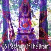 55 Instance of the Brain di Lullabies for Deep Meditation