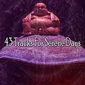 43 Tracks for Serene Days de Massage Therapy Music