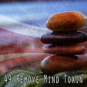 49 Remove Mind Toxin by Deep Sleep Meditation