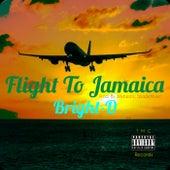 Flight To Jamaica (Thinkin' Bout U) von Bright-D