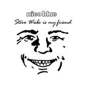 Steve Wiebe Is My Friend (Parody of