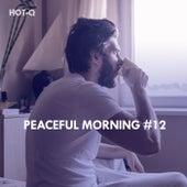Peaceful Morning, Vol. 12 de Hot Q