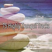 75 Highly Tranquil Tracks by White Noise Research (1)