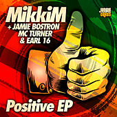 Positive EP by Mikkim