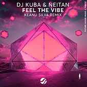 Feel The Vibe (Keanu Silva Remix) di DJ Kuba