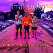 Amaphupho (feat. Immosoul & Ramsey) de Troja