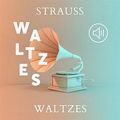 Strauss Waltzes de Various Artists