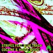 Cocaine & House Music von The Stripes