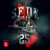 Concierto 25 Aniversario (Pt. 1) de SFDK