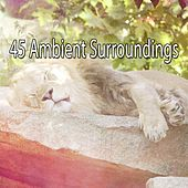 45 Ambient Surroundings von Best Relaxing SPA Music
