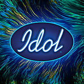 Idol 2020: Live 2 by Various Artists