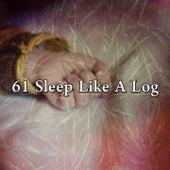 61 Sleep Like a Log de Musica para Dormir Dream House