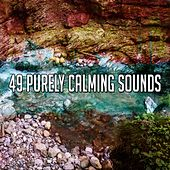 49 Purely Calming Sounds von Best Relaxing SPA Music