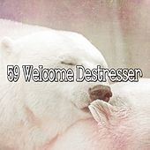 59 Welcome Destresser by Lullaby Land