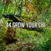 44 Grow Your Chi de Nature Sounds Nature Music (1)