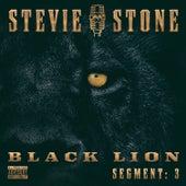 Black Lion Segment: 3 by Stevie Stone