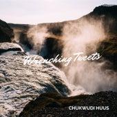 Wrenching Tweets de Chukwudi Huus