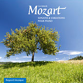 Mozart: La Magie, Sonates & Variations Pour Piano by Various Artists
