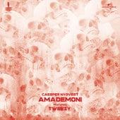 Amademoni von Cassper Nyovest