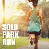 Solo Park Run by Various Artists