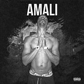 Not Normal by Amali