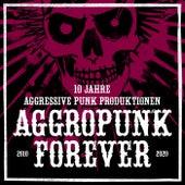 Aggropunk Forever - 10 Jahre Aggressive Punk Produktionen von Various Artists
