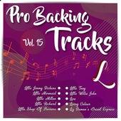 Pro Backing Tracks L, Vol.15 by Pop Music Workshop