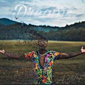 Dreams de Ant (comedy)