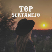 Top Sertanejo van Various Artists