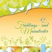 Frühlings- Und Maienlieder de Ensemble Fiddletüüt