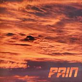 No More Tomorrow by Pain