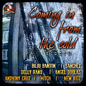 Coming In From The Cold Riddim de Various Artists