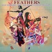 Feathers by David Strickland