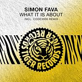 What It Is About by Simon Fava
