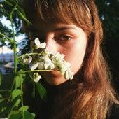 кровавая роза de Morgendie