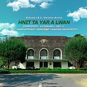 Hnit Tayar Alwan, Vol. 1 & 2 by Various Artists