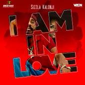 I'm in Love de Sizzla