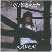 Jiný břeh de Raven