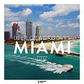 Deep City Grooves Miami, Vol. 1 de Various Artists