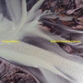 Seabird (Tensnake Remixes) de Kasper Bjørke