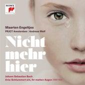 Ich habe genug, BWV 82: III Aria - Schlummert ein (Alt) von Maarten Engeltjes