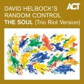 The Soul (Trio Riot Version) de David Helbock