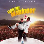Mi Mario de Crazy Design