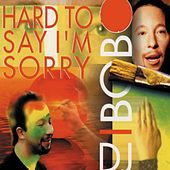 Hard to Say I'm Sorry von DJ Bobo