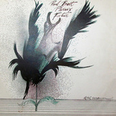 Phoenix Future by Paul Brett