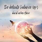 The Delicate Balance von David Arkenstone
